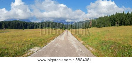 straight mountain road in Durmitor Park, Montenegro