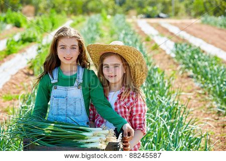 Little kid farmer girls in onion harvest at orchard