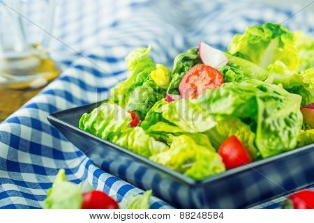 Fresh lettuce salad with cherry tomatoes  radish and carafe with olive oil. Several