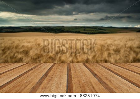 Stunning Wheat Field Landscape Under Summer Stormy Sunset Sky With Wooden Planks Floor