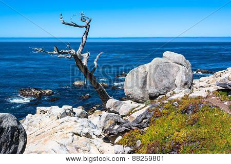 Rocks and ocean from Monterey coast, California