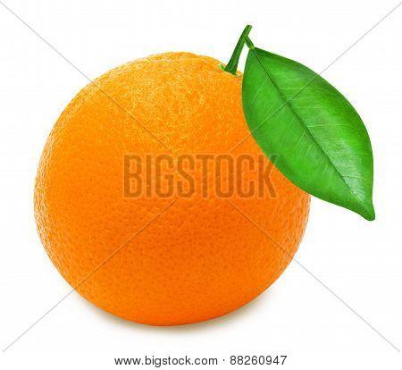 Ripe orange on a white background isolated