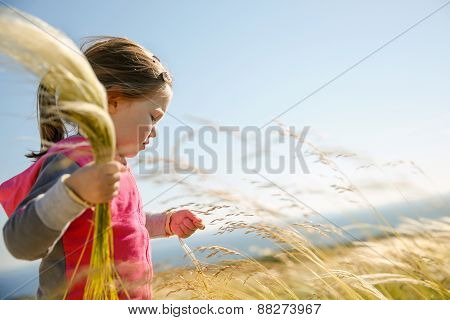 Cute Little Girl Picking Grasses