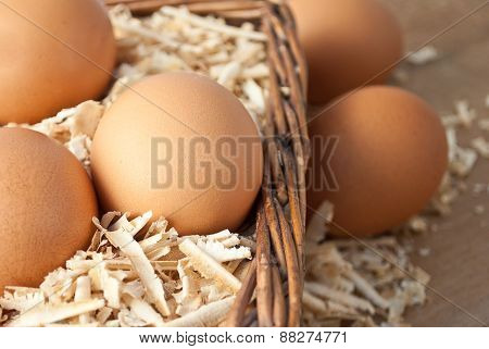 Egg On Sawdust With Old Basket Over On Wooden Background