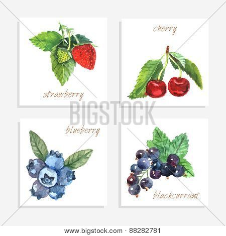 Berry Paper Cards