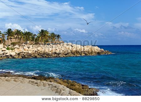 Mexico park of Shkaret. Rock with palm trees on Oceanside