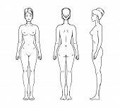 Photo of female body.