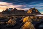 picture of lavender plant  - Sunset on the mountains and volcanic lava sand dunes by the sea in Stokksness - JPG