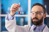 stock photo of tubes  - Handsome male scientist with a test tube working at the laboratory - JPG