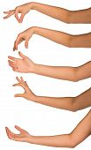 image of open arms  - Set of many woman arms in different phases isolated on white background with open hands - JPG