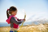 foto of hay fever  - Cute little girl picking and gathering brown grasses on a meadow with the wind blowing through her long hair and sea in the background - JPG