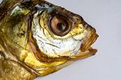 picture of fish skin  - Closeup of a dried smoked fish head with dehydrated eye - JPG