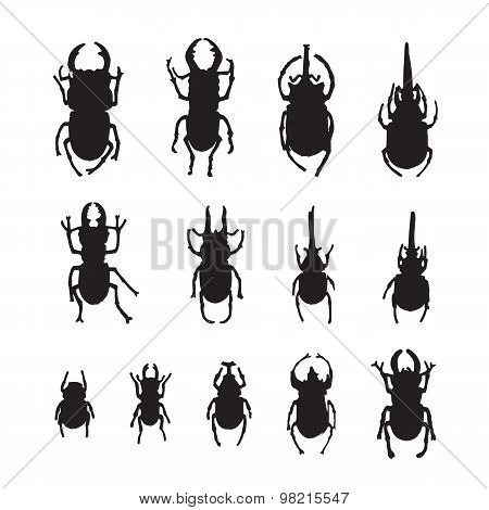 Vector Group Of Insects On White Background. Beetle
