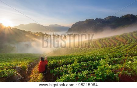 Chiang Mai, Thailand-december 11 : Asian Woman Traveller Use Smart Phone Take A Photo Of Beautiful L