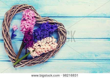 Postcard With Fresh Flowers Hyacinths  And Decorative Heart
