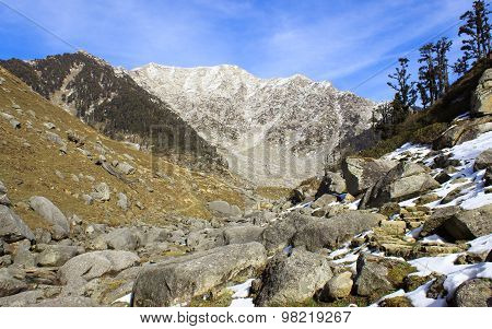 Himalayan mountains with snow peaks and forests
