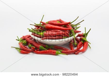 Red hot chile