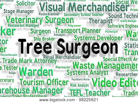 Tree Surgeon Represents General Practitioner And Branch