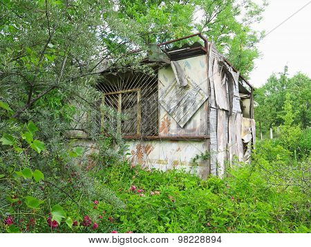 Old Abandoned Wooden Barn Overgrown With Vegetation