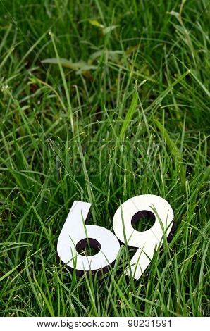 Number 69 On A Green Grass Background