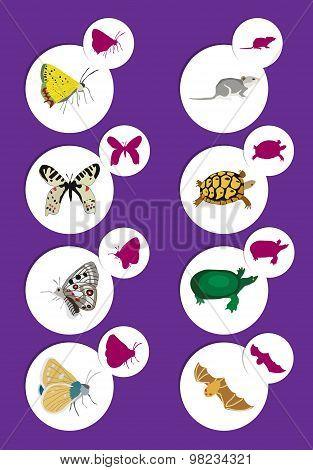Land Animals Set 2 - Illustration - Eps 10