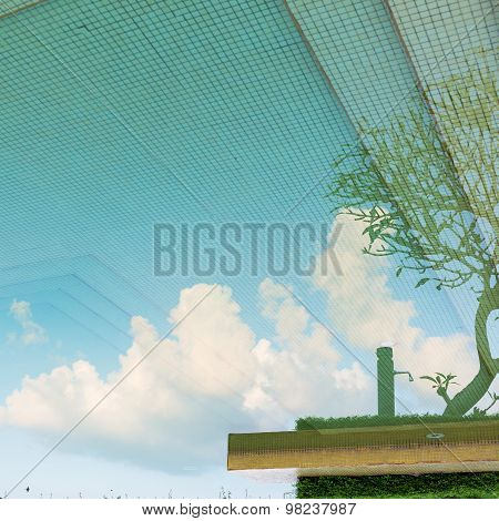 Reflection Sky And Tree Of Water In Swimming Pool