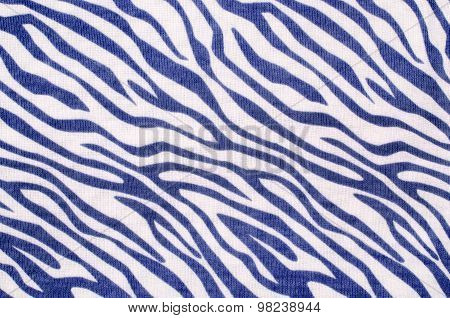 Blue And White Zebra Pattern.