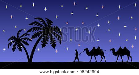 Man with camels in the night sky.