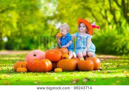 Kids At Halloween Pumpkin Patch