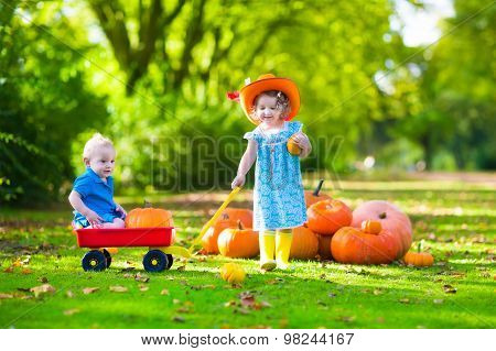 Kids At Halloween Pumpkin Patch