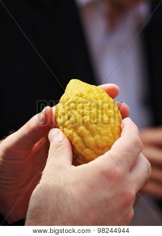 Jewish autumn holiday of Sukkot. Beautiful man's hands hold a ritual fruit a citron