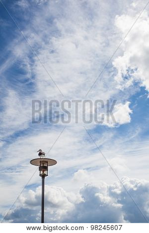 Sea Gull Sitting On A Lamp Post In Front Of Cloudy Sky