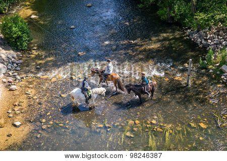 Horseback Riders Trying To Cross A Creek