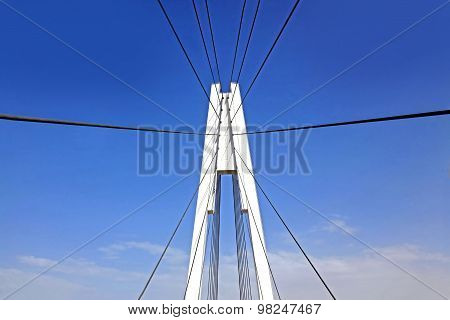 Pylon Cable-stayed Bridge
