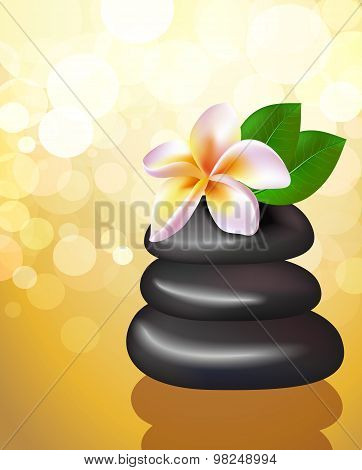 Spa Vector Illustration Of Stones With Frangipani Flower