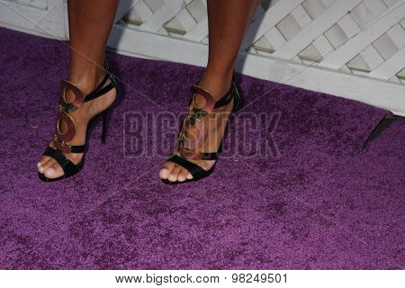 LOS ANGELES - AUG 8:  Nicole Murphy (shoe detail) at the 17th Annual HollyRod Designcare Gala at the The Lot on August 8, 2015 in West Hollywood, CA