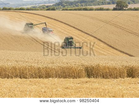 Harvest Time in Hampshire, England