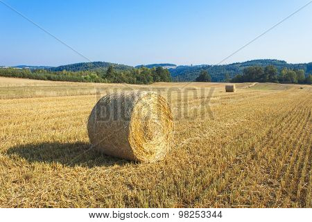 Round straw bales in harvested fields and blue sky without clouds.