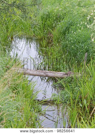 Small Ditch And A Plank