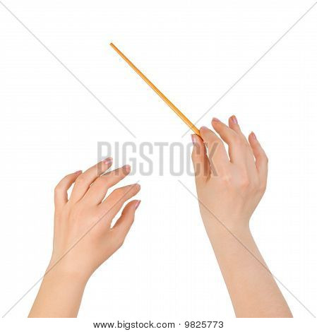 Music Conductor Hands