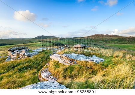 Wild Rugged Moorland