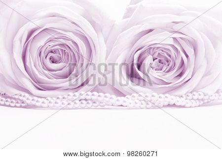 Beautiful Pink Roses With Pearl Toned In Sepia As Wedding Background. Soft Focus.