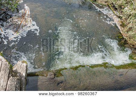 Freshwater Stream 2