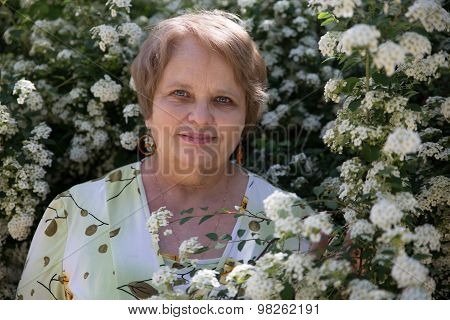 Senior woman under white flower of Spiraea shrub in a garden