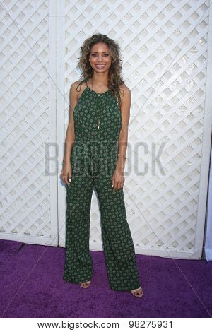 LOS ANGELES - AUG 8:  Brytni Sarpy at the 17th Annual HollyRod Designcare Gala at the The Lot on August 8, 2015 in West Hollywood, CA