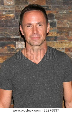 LOS ANGELES - AUG 8:  William deVry at the General Hospital Fan Club Luncheon Arrivals at the Embassy Suites Hotel on August 8, 2015 in Glendale, CA