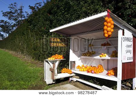 Honor store farm stand with fresh lemons and oranges for sale.