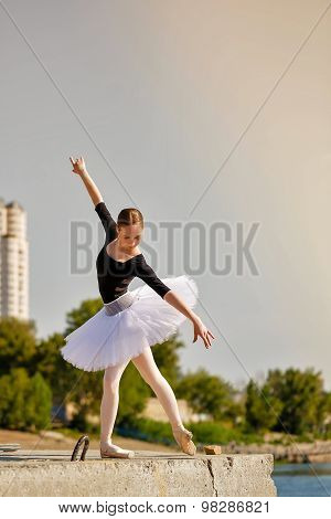Ballerina Dancing On The Waterfront.