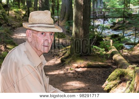 Active Senior Man Forest Hiking Trail