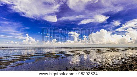 Panorama of low tide sea.